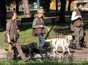 Рабочие качества собак