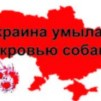 АКЦИЯ ПРОТИВ ЖИВОДЁРОВ2