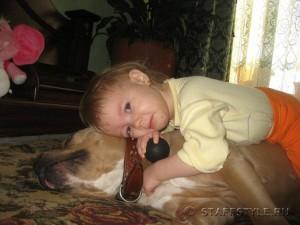 Правда, что собаки бойцовских пород могут быть ласковыми?