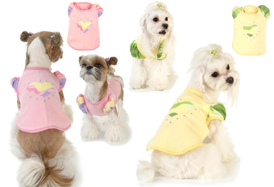 интернет магазин для собак